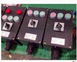 BZC8050-A2D2K1现场防爆防腐操作柱