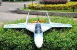 无人机系统 (固定翼)(凯旋1号)