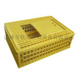 牧正成鸡周转箱 加厚鸡笼 塑料鸭笼 鸽子运输笼