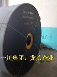 普通输送带,耐高温输送带,650*5