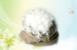 50%水洗白鸭绒
