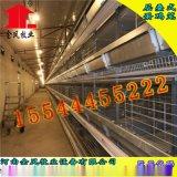 湘西五层层叠式金凤蛋鸡笼自动化养鸡设备厂家