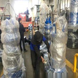 泵站改造潜水轴流泵 雪橇式轴流泵