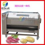 毛辊大姜清洗去皮机 红薯毛刷式去皮清洗机