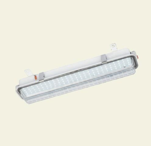 IP66/IP67 LED熒光燈110V/220V船用艙頂燈CCY47