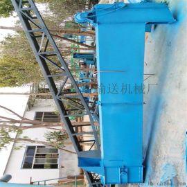 直销垂直环链上料机 水泥粉用斗式提升机xy1