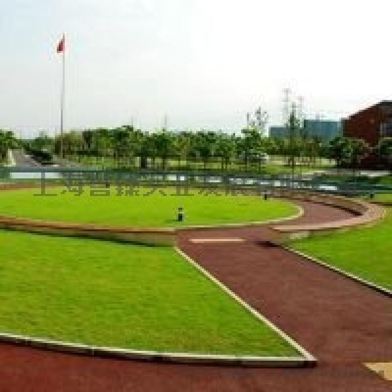 北京彩色防滑路面,**透水地坪材料施工