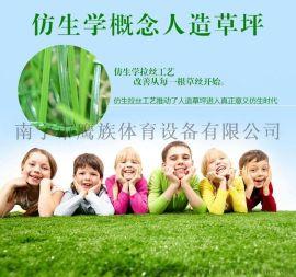 广西南宁鹰族仿真草坪人造人工假草皮户外阳台装饰幼儿园塑料足球场绿地毯加密