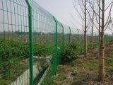 双边丝护栏网 简易护栏 菜园子围网