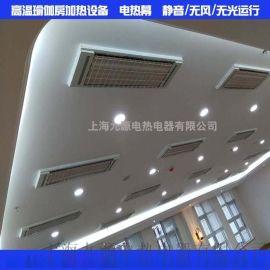 九源辐射电热幕 SRJF-X-10 高温瑜伽房加热设备 采暖电热器