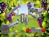 高品质葡萄酒前期处理设备生产线 不锈钢果酒生产线