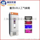 LED人工气候箱MRC-250C-LED