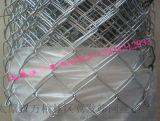 專業生產太原煤礦勾花網 勾花護坡網 採礦頂部支護勾花網--實體廠家