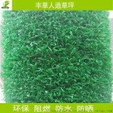 休闲装饰卷丝人造草坪高尔夫人工草皮装饰幼儿园仿真草