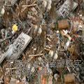 东莞工业废电机回收加工