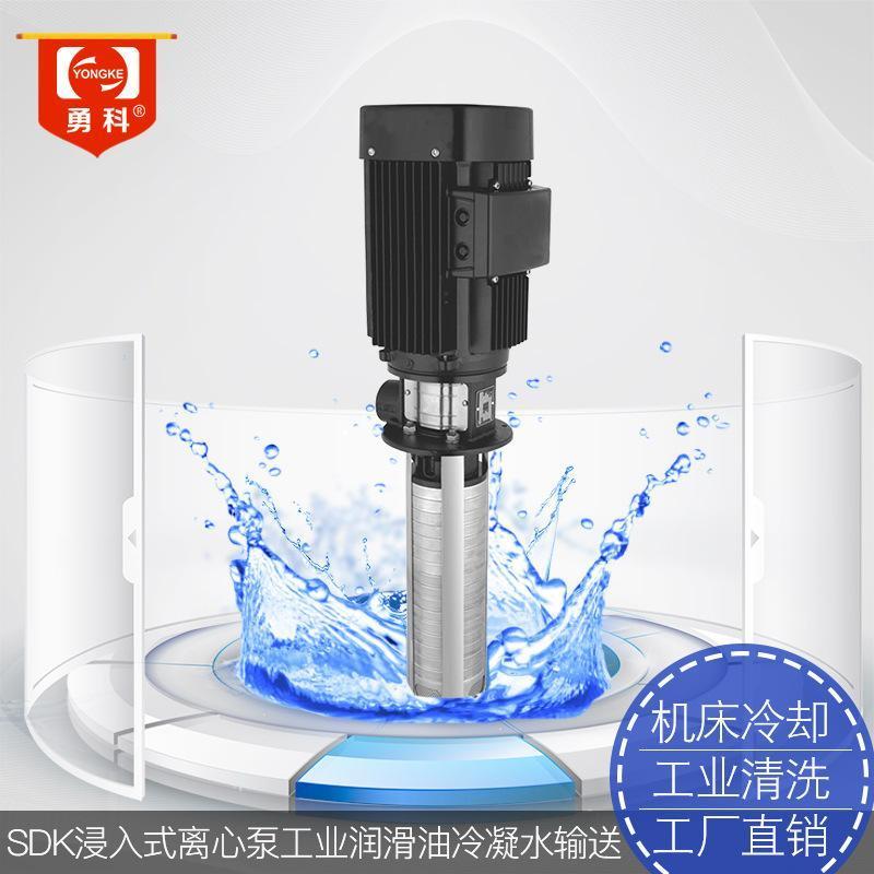 SDK20浸入式管道離心泵 工業專用不鏽鋼高壓水泵