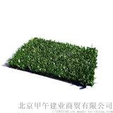 青叶高尔夫果岭草坪打击垫