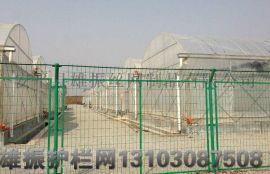 圈地护栏网,铁丝围栏网,生态园防护网