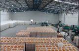 大型農批市場綜合冷庫 (SMS)