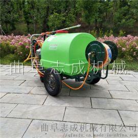 志成汽油动力喷雾器手推式园林打药机