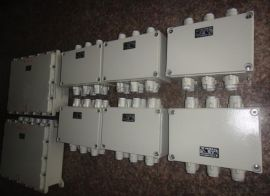 防爆电缆导线分线接线箱