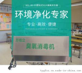 壁挂式臭氧发生器消毒机空间杀菌消毒设备厂家直销批发