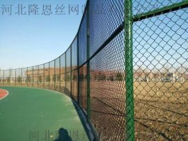 隆恩学校篮球场围栏网