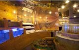 深圳天龙商业城土建海鲜鱼池定做,深圳美乐汇美食广场设计海鲜鱼池