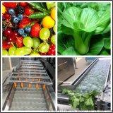 全自动蔬菜清洗机 水果蔬菜气泡喷淋清洗机