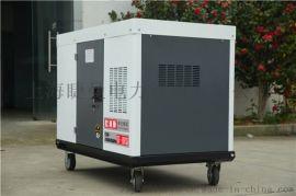 GT-1600TSI便携12KW柴油发电机