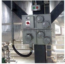 防爆检修配电箱IIC防爆电源插座箱