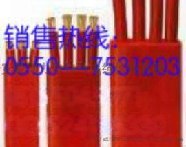 塑料绝缘硅橡胶护套扁电缆YFGB4x4mm2