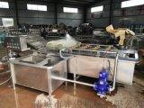 大型洗甘薯设备 根茎类球根类作物清洗机