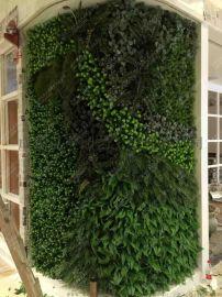 宜宾泸州仿真植物墙 内江植物墙生产 雅安仿真绿植墙 达州广安仿真绿植墙