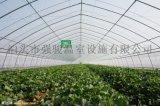 建蔬菜大棚骨架圆管的成本和造价