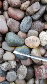 山东鹅卵石滤料直销 砾石滤料供应商