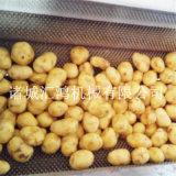 匯鴻HQX-1000毛刷式獼猴桃清洗去皮機