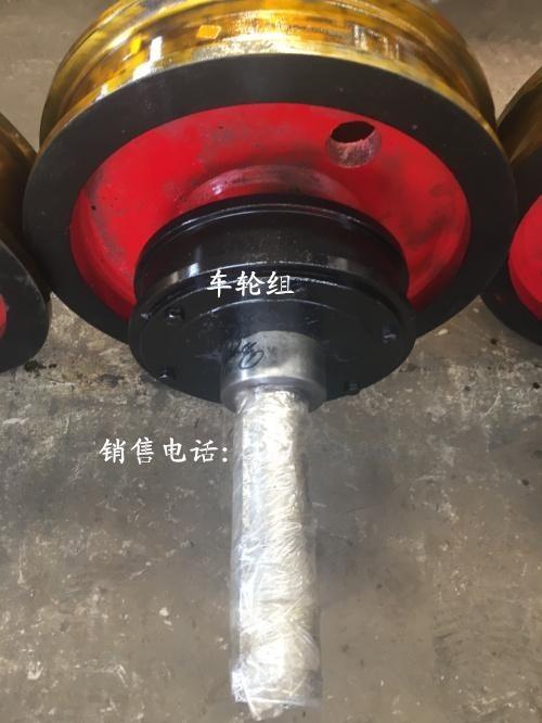 河南起重機車輪組生產廠家|直徑600主動車輪組|天車車輪組|10T起重機用車輪組|雙邊車輪組|軌道車輪組|車輪組圖紙