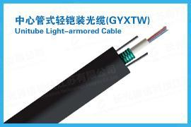 云南红河州中心管式轻铠装光缆(GYXTW)-长光通信