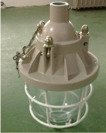 BAD54-J85防爆节能灯