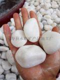 北京供应3-5公分抛光白色鹅卵石