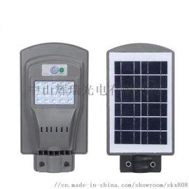 20W高亮LED智能自动控制太阳能路灯头
