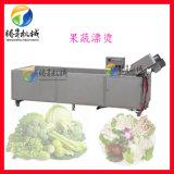 蔬菜杀青机 净菜漂烫机