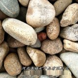 本格供应鹅卵石 水处理鹅卵石 电力变压器用鹅卵石