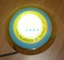 LED不锈钢池壁灯-01