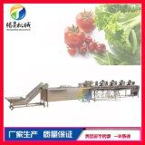 食品蔬菜水果清洗风干流水线 商用果蔬清洗风干线