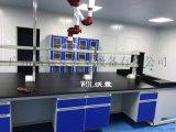 廣州工廠直銷PP小號雙面滴水架實驗室設備滴水架