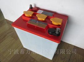 南蓄3DG230蓄电池电动观光车巡逻车雅迪环卫车电瓶