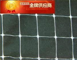 金争 塑料 挤出网 拉伸网 挤出成型 PP 聚乙烯 聚丙烯 滤芯