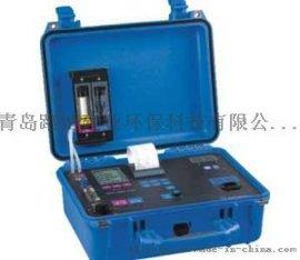 德国菲索Maxilyzer NG plus(M650) 便携式烟气分析仪 内置蠕动泵自动排除冷凝水 红外打印机